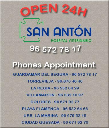 Phones Centers